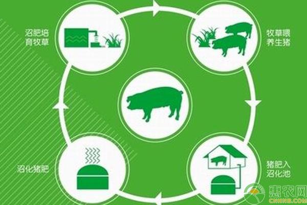 循环农业补贴