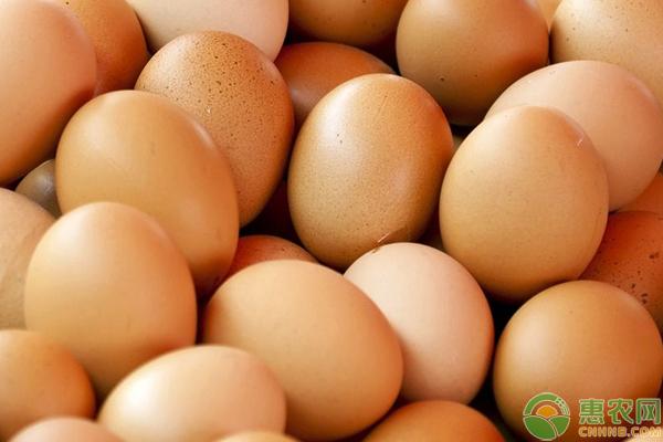 雞蛋價格漲跌如何?