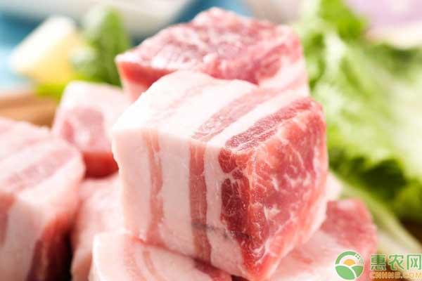 全国猪肉价格