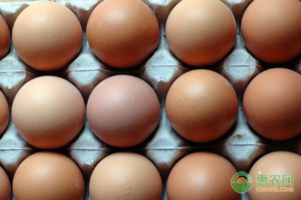 11月份鸡蛋新行情