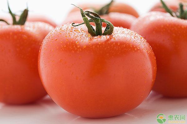 吃西红柿的好处