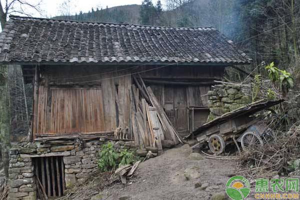 明年起,农村这五种房子都将被强制拆除!大家千万不要购买