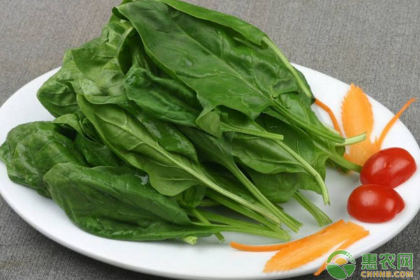 菠菜有哪些功效和作用?菠菜不能和哪些东西一起吃?