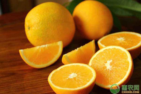 橙子价格行情