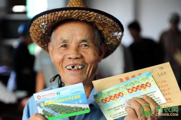 基本养老金补助直接向家庭提供