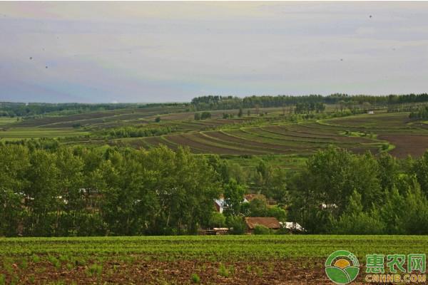 2019年农村土地政策将迎来哪些新变化?看看和你有关的是哪些?