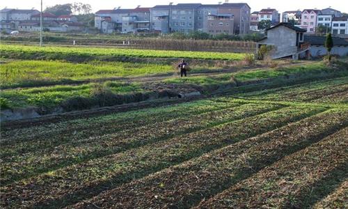农村宅基地一定要确权吗?没有确权会有哪些影响?