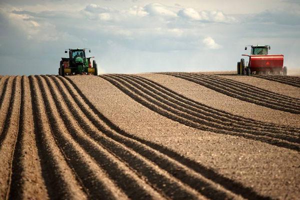 粮补取消了!农民还有这三种补贴可领,金额比粮补还高!