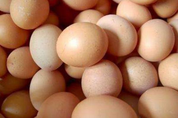 春节将至,鸡蛋价格行情如何?2019年各地鸡蛋行情分析