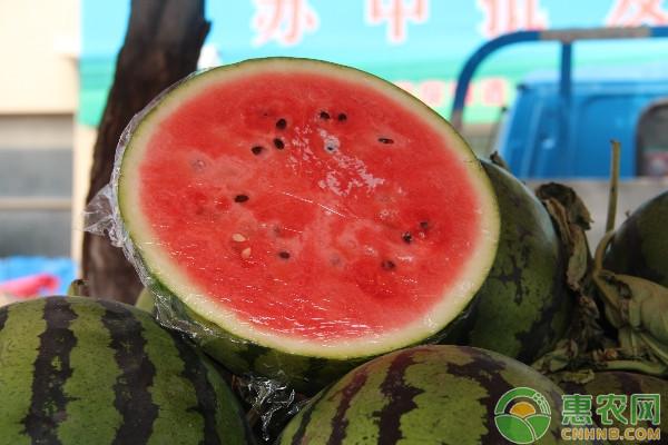 西瓜裂瓜的原因及其主要预防措施