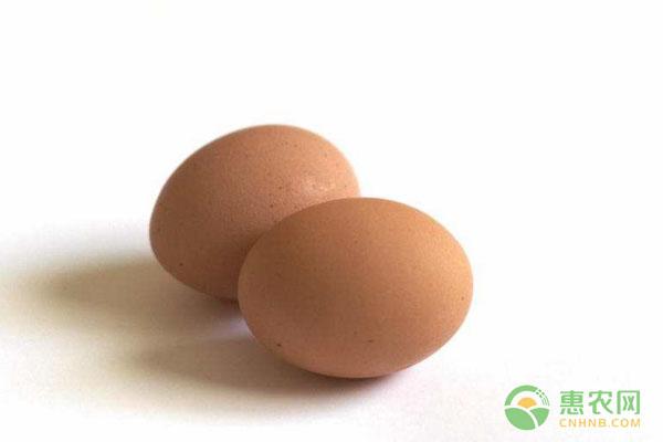 今日鸡蛋价格多少钱一斤?2019全国鸡蛋价格行情分析