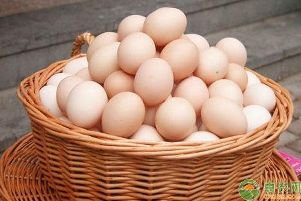 2019年最新鸡蛋价格汇总及行情分析