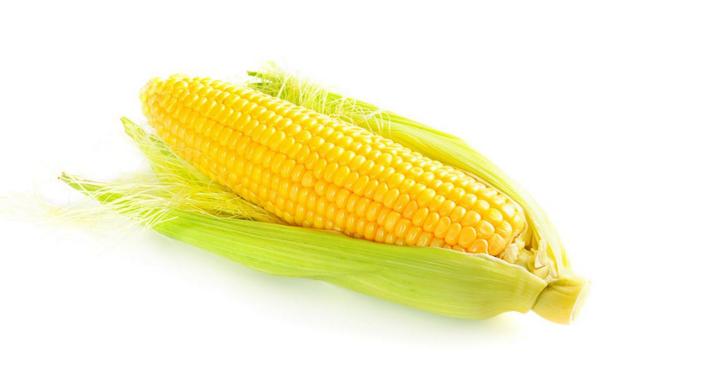 玉米价格现在是涨是跌?2019年全国最新玉米价格行情分析