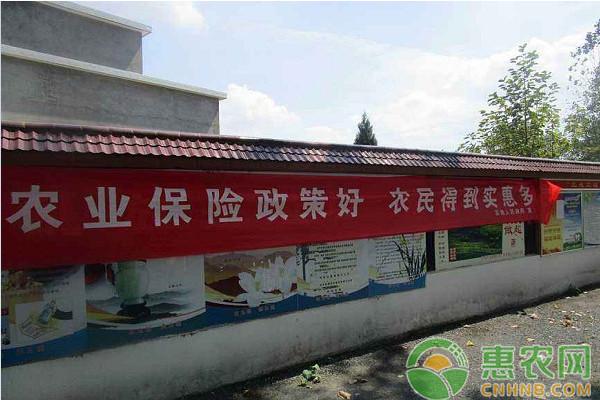 2019年陕西省最新农业保险补贴政策详情