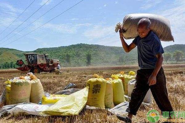 农业补贴标准