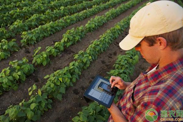 精准农业发展