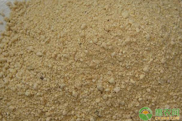 现在豆粕多少钱一吨?3月13日最新豆粕价格行情分析