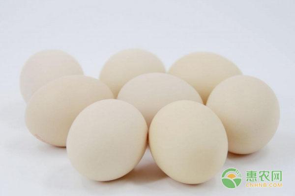 今日主销区蛋价行情如何?2019年全国鸡蛋行情预测