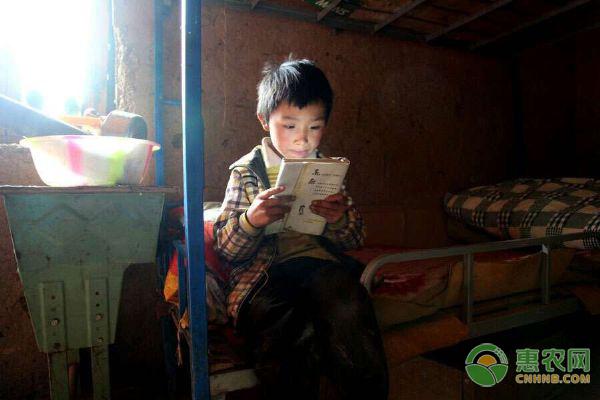 我国对于教育事业大力扶持,那么都有哪些补助可以领取?