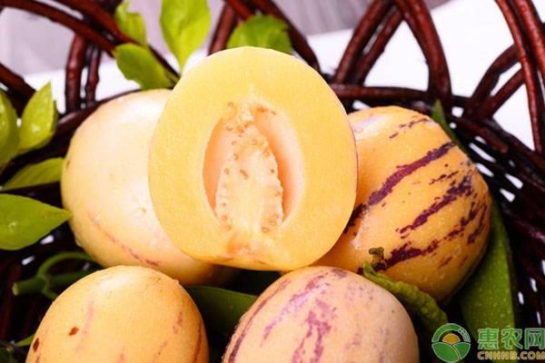"""盘点这五种营养丰富,但""""味道怪异""""的新型保健水果"""