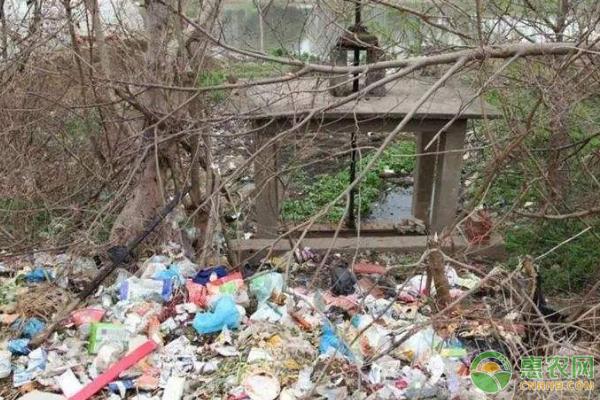 面对农村乱扔垃圾现象,我们可采取哪些措施?