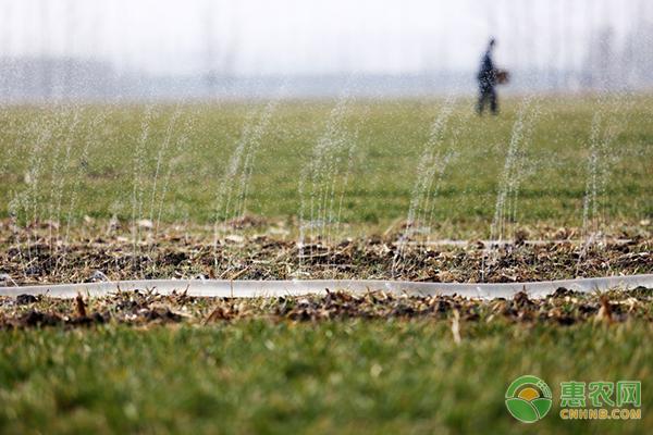 2019年农田承包土地变更如何申报?需要哪些条件?