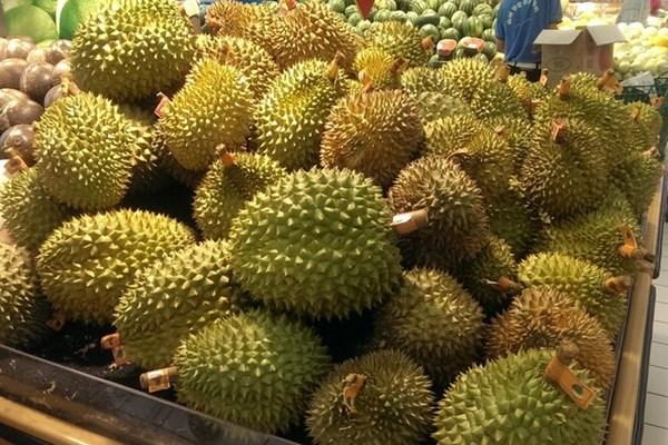 2019年榴莲价格多少钱一斤?榴莲价格为什么贵?