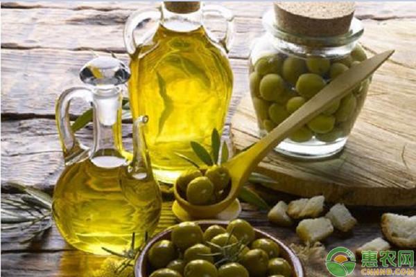 2019年橄榄油多少钱一斤?橄榄油的功效与作用