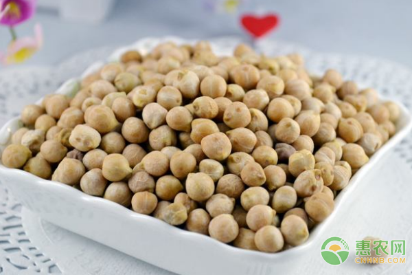 鹰嘴豆多少钱一斤?鹰嘴豆食用功效作用