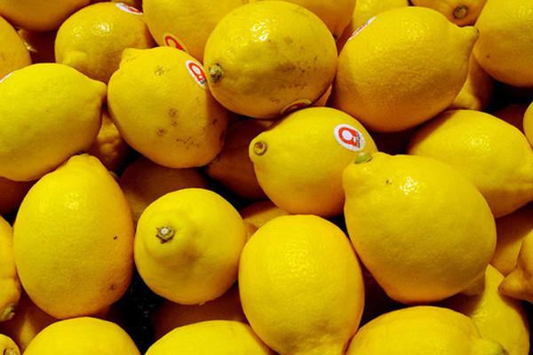 柠檬价格为什么那么贵?2019年柠檬价格最新行情汇总