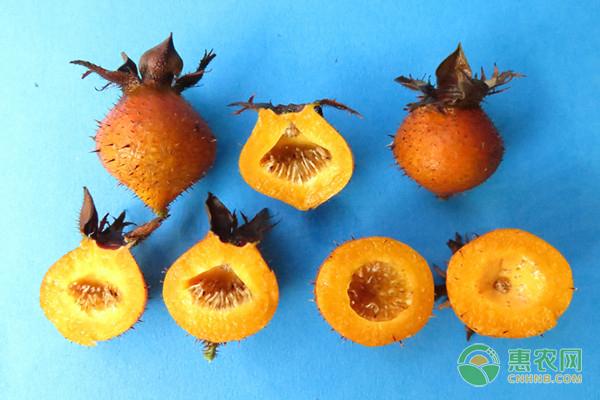 如今金刺梨的市场价多少钱一斤?有几种吃法?
