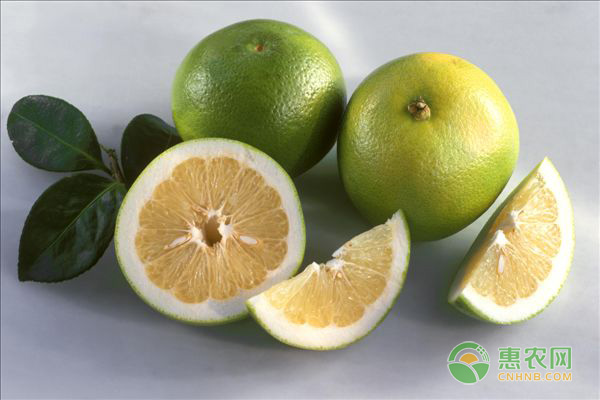 空腹可以吃柚子吗?饭前还是饭后吃柚子好些?