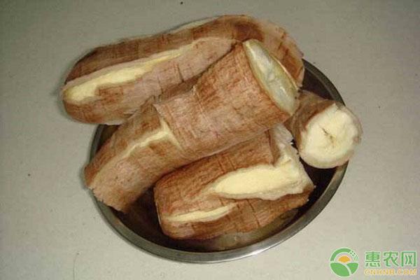 木薯市场价格
