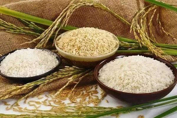 五谷米是哪五谷?多少钱一斤?五谷米的功效和作用