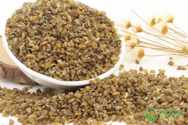 苦荞米的食用功效