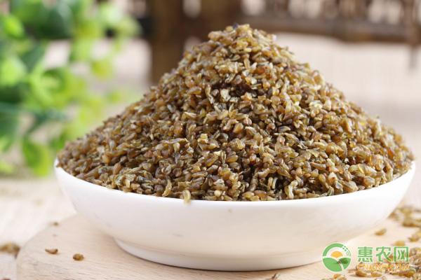 苦荞米的做法
