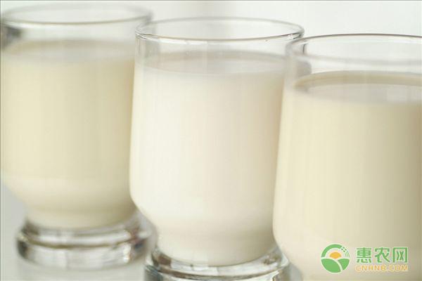 人造奶有哪些成分?相比于传统牛奶的优势在哪?