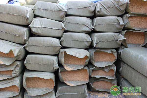 现在稻壳的价格是多少钱一吨?大棚蔬菜可以这样运用稻壳!