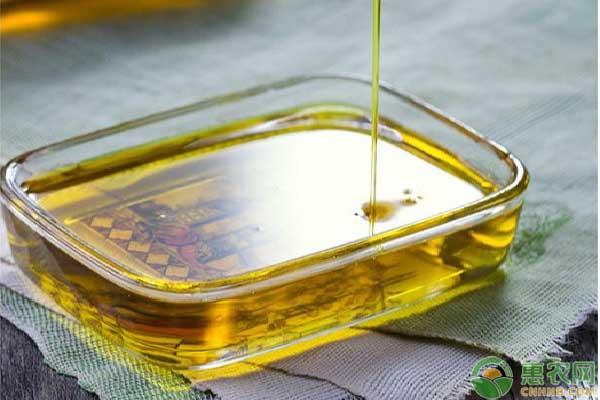 黄秋葵油营养价值