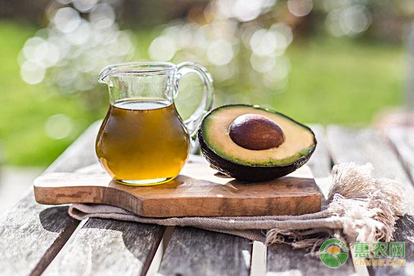 鳄梨油价格贵不贵?鳄梨油的美颜功效有哪些?