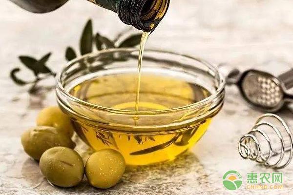 红花籽油的食用方法