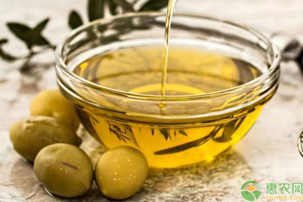 色拉油跟大豆油区别