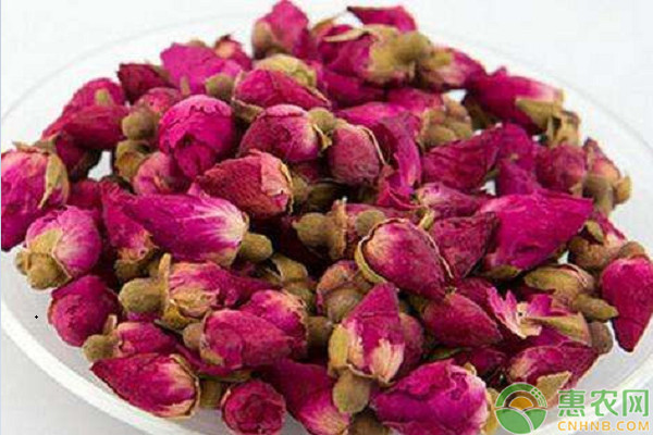 花茶的种类有哪些?多少钱一斤?花茶的功效与作用