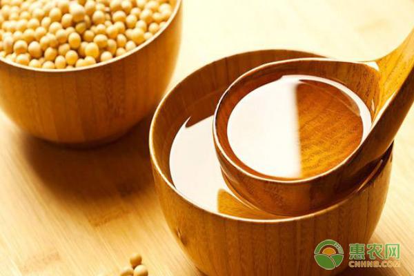 茶叶籽油价格