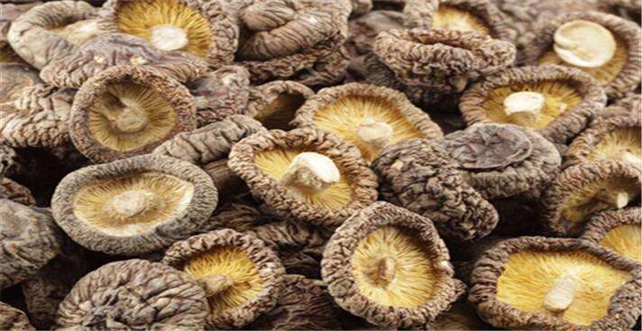 干香菇的市场价格如何?干香菇的泡发方法