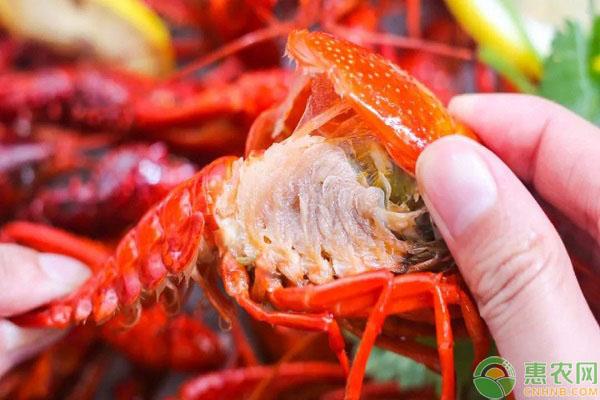 小龙虾的食用误区