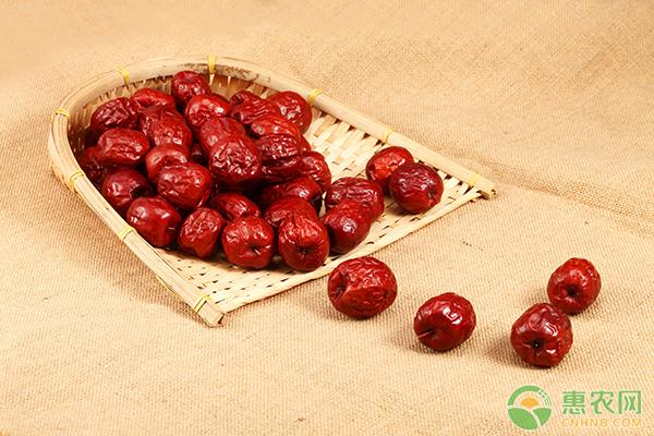 今日红枣市场行情分析