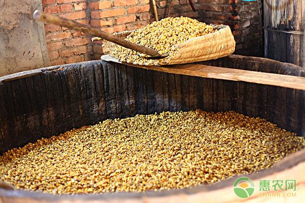 三斤粮食一斤酒,农村现在酿制粮食酒的越来越少是怎么回事?