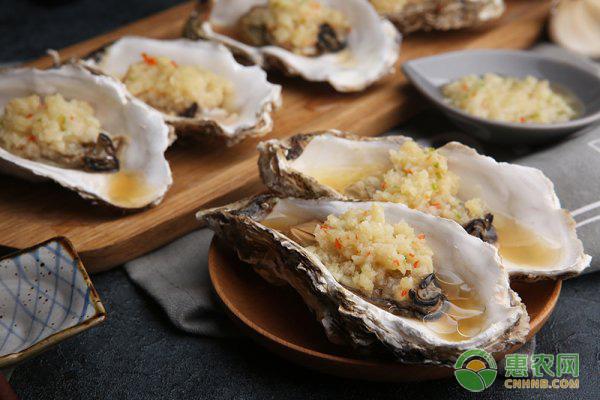 牡蛎的食用功效