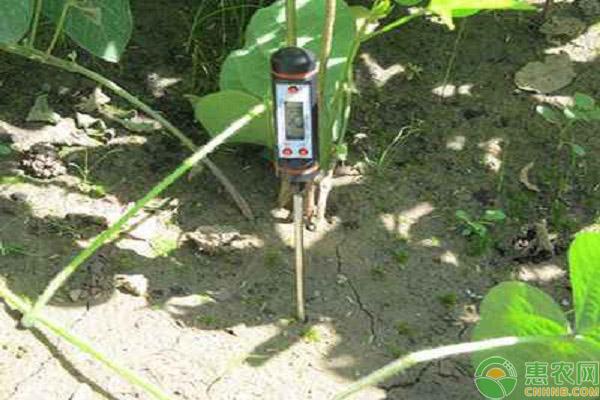 农用检测仪器市场走势综评